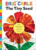 Tiny Seed flower kindergarten book