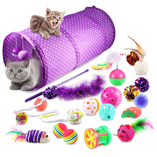 Yosemy Juguetes para Gatos Interactivos, Mascota Gato Captura Juguetes De Entrenamiento, 20 Piezas