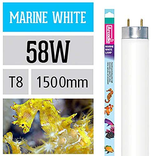 Arcadia 58 Watt Marine White 14.000 Lampe Aquarium Meerwasser Leuchtstofflampe