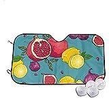 Ralapmill Ombrello Disegnato a Mano Juicyfruits Pattern per Mantenere Il Veicolo Fresco e Senza Danni