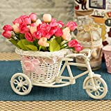 A perfect gift for all occasions, be it your mother, sister, in-laws, boss or your friends, this cycle vase wherever placed, is sure to beautify the surroundings.  The Package Contains: 1 Cycle vase (assorted colors) + Peonies Bunches | Cycle Size wi...