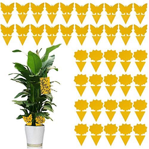 QUHEEE 30 Stück Gelbe Fliegenfalle Klebrige Insektenfallen Fruchtfliegenfalle Gelbsticker Fliegenfalle Insektenfalle Fliegenfalle Klebefalle Für Gartenarbeit Pflanzenschutz Und Schädlingsbekämpfung