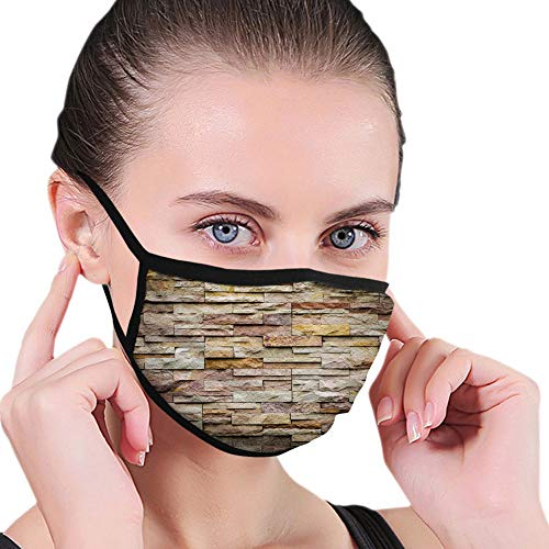 Fillter Face Cloth for man and woman Urban Brick Slate Stone Wall with Rocks Featured Facade Reusable Windproof Mouth Anti Dust Double Protection
