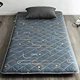 <span class='highlight'><span class='highlight'>TUTUMAO</span></span> Cotton Tatami Mattress Topper Thick, Quilted Breathable Futon Mattress Pad Tatami Floor Mat Foldable Sleeping Mat Dormitory Home (Color : J, Size : 200×220cm)
