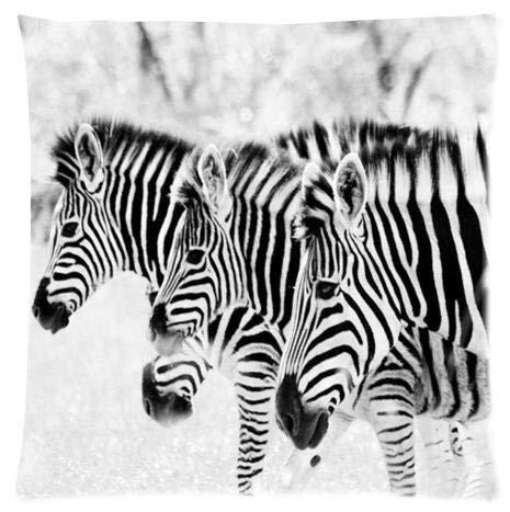 Fundas de almohada de cebra en blanco y negro, para sofá, habitación o cama, 66 x 66 cm