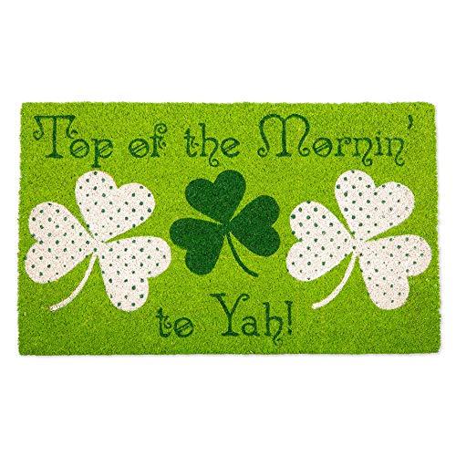 DII Fun Greetings Home Décor Indoor/Outdoor Natural Coir Fiber Doormat, 18 x 30 Inch, Top of The Mornin to Yah