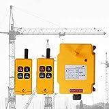 MXBAOHENG Mando para Grua Mando Puente Grua HS-4 220V Mando para Polipasto 2 Transmisor + ...