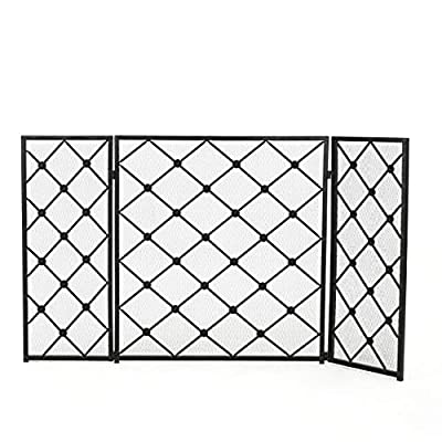 Christopher Knight Home Chelsey 3 Panelled Iron Fireplace Screen, Black by GDF Studio