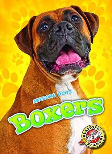Schuh, M: Boxers (Blastoff Readers. Level 2)