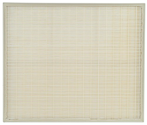 Whirlpool HEPA Replacement for AP450, AP510, AP51030K, AP51030KB, AP45030K, WP500, and WP1000 Air Filter, Large, Pearl White