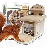 BellMietz® geliebtes Eichhörnchen Futterhaus [extra sicher & stabil]   Eichhörnchenhaus mit...
