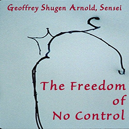The Freedom of No Control cover art