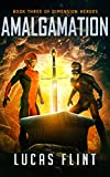 Amalgamation (Dimension Heroes Book 3) (English Edition)