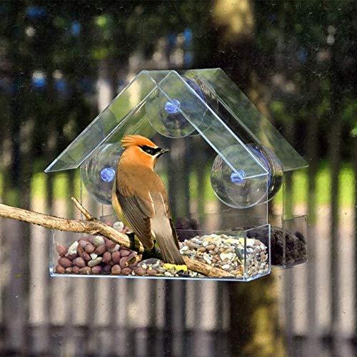 Transparenter Futterspender aus Kunststoff aus dem Hause der Adsorption des Vogels, kreativ