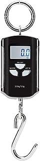 Básculas de peso Mini báscula de grúa portátil de 200 kg / 100 g Báscula digital de alta resistencia Báscula de gancho industrial Balanza de pesaje electrónica