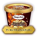 ハーゲンダッツ Decorations アーモンドキャラメルクッキー88ml×6個