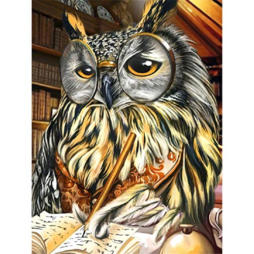 DIY 5D Diamond Painting Kits for Adults Full Round Drill Diamond Painting for Home Wall Decor Gift Owl Reading 11.8x15.7 in by Megei