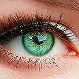 """ELFENWALD farbige Kontaktlinsen ohne Stärke, Produktreihe """"INTENSE"""", ein paar weiche Farblinsen OHNE Aufbewahrunsbehälter, natürlicher Look TOPAS -"""