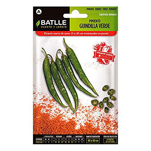 Portal Cool Horticultural Samen Batlle - Pfeffer Grüne Guindilla (300 Seeds)