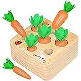 Amasawa Karottenernte Montessori,Karotte Spielzeug Sortierspiel Holz,Geeignet für Jungen und Mädchen über 2 Jahre, um im Vorschulalter Feinmotorik zu erlernen