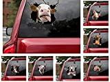 KKFG Animal Crack Car Sticker, 11.8 x 11.8 inch Car Window Decal, ,Multiple Styles Pet Static Electricity Sticker for Cars,3D Realistic Waterproof DIY Dog Car Window Paste Stickers