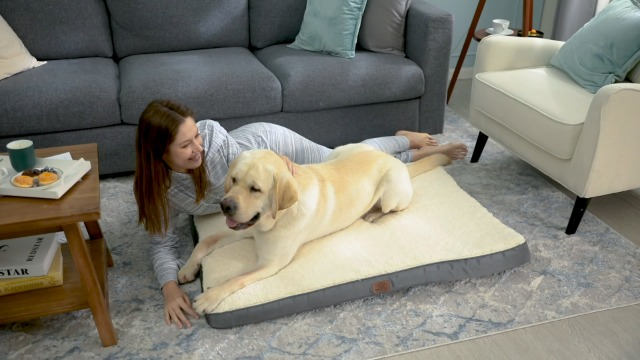 Extra cozy bed for dogs and cats