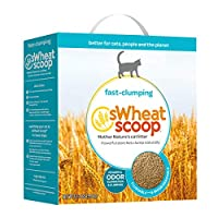 sWheat Scoop Multi-Cat All-Natural Clumping Cat Litter, 12.3lb Box by sWheat Scoop