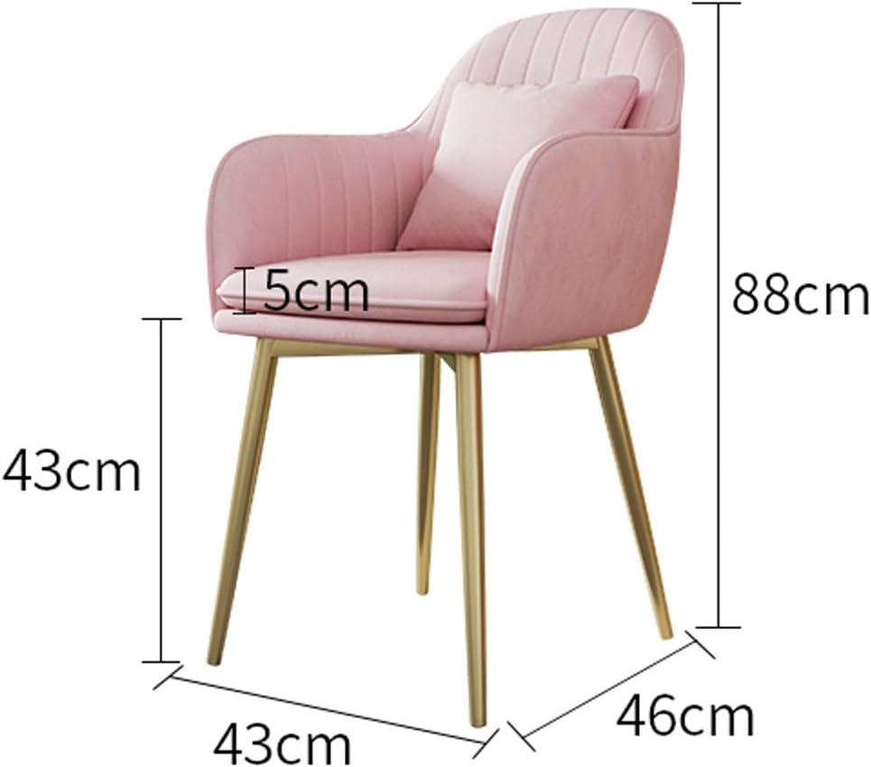 LF Chaise de Salle, Chaise de Bureau Simple, créative Dossier, Chaise Loisirs, Maison Adulte Chaise de Salle Simple (Color : Pink) Pink