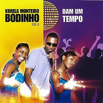 Dam um Tempo - Vol. 8