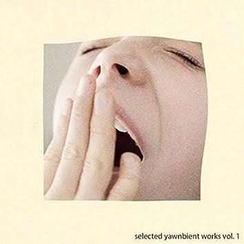 Selected Yawnbient Works, Vol. 1