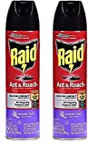 Raid Ant & Roach Killer Lavender 17.5 Ounce (Pack of 2)