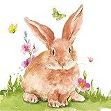 Tovaglioli (set da 2 / 40 pezzi) a 3 strati, 33 x 33 cm, coniglietti pasquali con fiori e farfalle su prato, colore: verde acqua