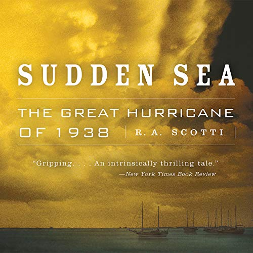 Sudden Sea audiobook cover art