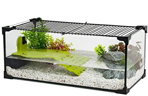Zolux Aquarium für Schildkröte, Aquaterrarium für Wasserschildkröten, 60 cm