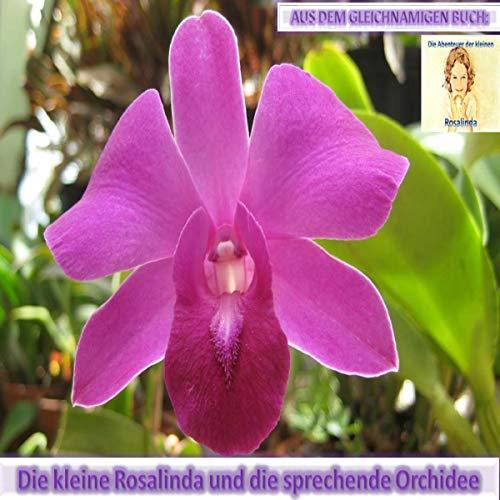 Rosalinda und die sprechende Orchidee Titelbild