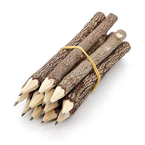 Holzbleistifte aus Graphit, rustikaler Zweig, einzigartige Birke, Holzfällerlook, Partygeschenk, 12 Stück