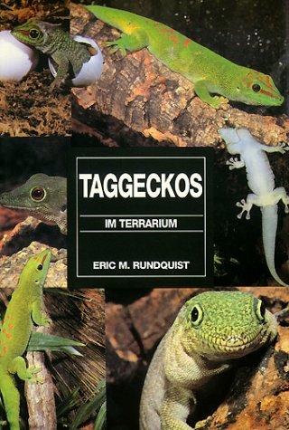 Taggeckos im Terrarium