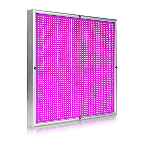 200W Plantengroei Lamp LED Volledig Spectrum Broeikas Binnen Fruit Boom Hennep Groenten Bloemen Plant Licht (Color : US)