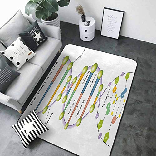 Baby Crawling Area Mats Educational,Colorful Structure of DNA Genetic Code Amino Acids Nucleotides Scientific Study,Multicolor 60