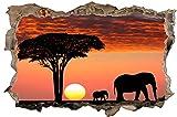 Savanne Safari Afrika Sonne Wandtattoo Wandsticker Wandaufkleber D0692 Größe 70 cm x 110 cm