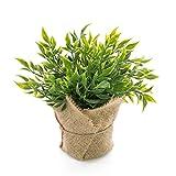 artplants.de Set de 5 Acebillo Artificial Vitus, Saco de Yute, Verde, 22cm, Ø24cm - Pack de ruscos sintéticos - Paquete de Acebo Menor Falso