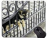 Lindo Cachorro de Perro yace en el Suelo Alfombrilla de ratón, Alfombrilla de ratón con Borde Cosido