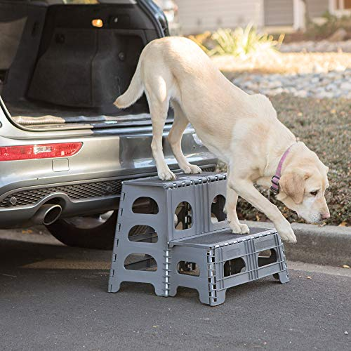 Range Kleen Pet Step Gray Folding 2 Step Dog Assist