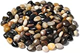 JOOLEE Piedras pequeñas de 500 g, piedras decorativas naturales, minipiedras decorativas surtidas, para macetas, jardín, acuario, terrario