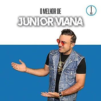 O Melhor de Junior Vianna