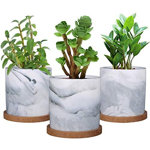 SQOWL Zylindrischer Keramik-Übertopf für Sukkulenten, 10,2 cm 4inch 1353
