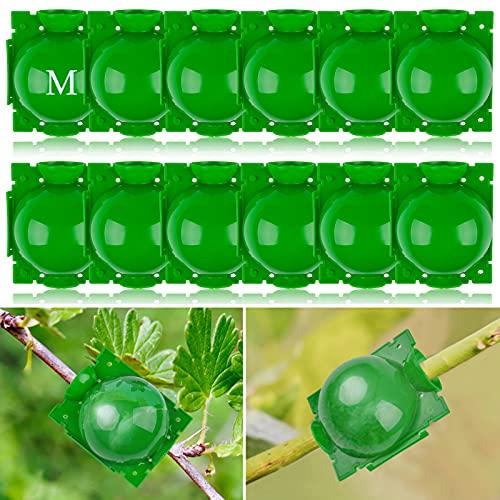 Kalolary Caja Cultivo Raíces Plantas Dispositivo Enraizamiento Plantas Reutilizable Caja Enraizamiento Bola Propagación Alta Presión Injerto Botánica Controlador Raíces Reproducción Asexual(Mediano)