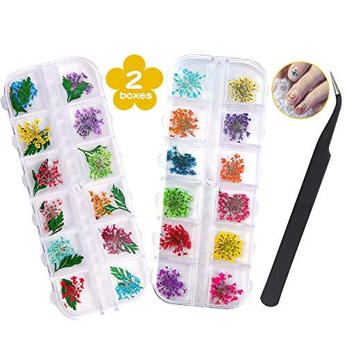 Getrocknete Blüten Nail Sticker, 2 Box 36 Stücke 3D Nail Art Kunstharz Blumen Sticker, Blüten Getrocknet Nagelkunst Trocken Blumen Nagel Zubehör für Nagel Dekor DIY Design mit 1 Gebogener Pinzette