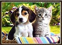 クロスステッチ大人、初心者11ctプレプリントパターン猫と犬40x50cmDIYスタンプ済み刺繍ツールキットホームの装飾手芸い贈り物40x50cm(フレームがない )