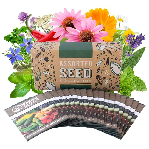 Medicinal & Herbal Tea Garden Seed Collection - Premium Assortment - 18 Non-GMO Herb Seed Packets: Angelica, Borage, Hot Pepper, Anise, Lavender, Peppermint, & More